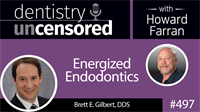 497 Energized Endodontics with Brett Gilbert : Dentistry Uncensored with Howard Farran