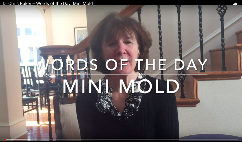 Words of the Day: Mini Mold