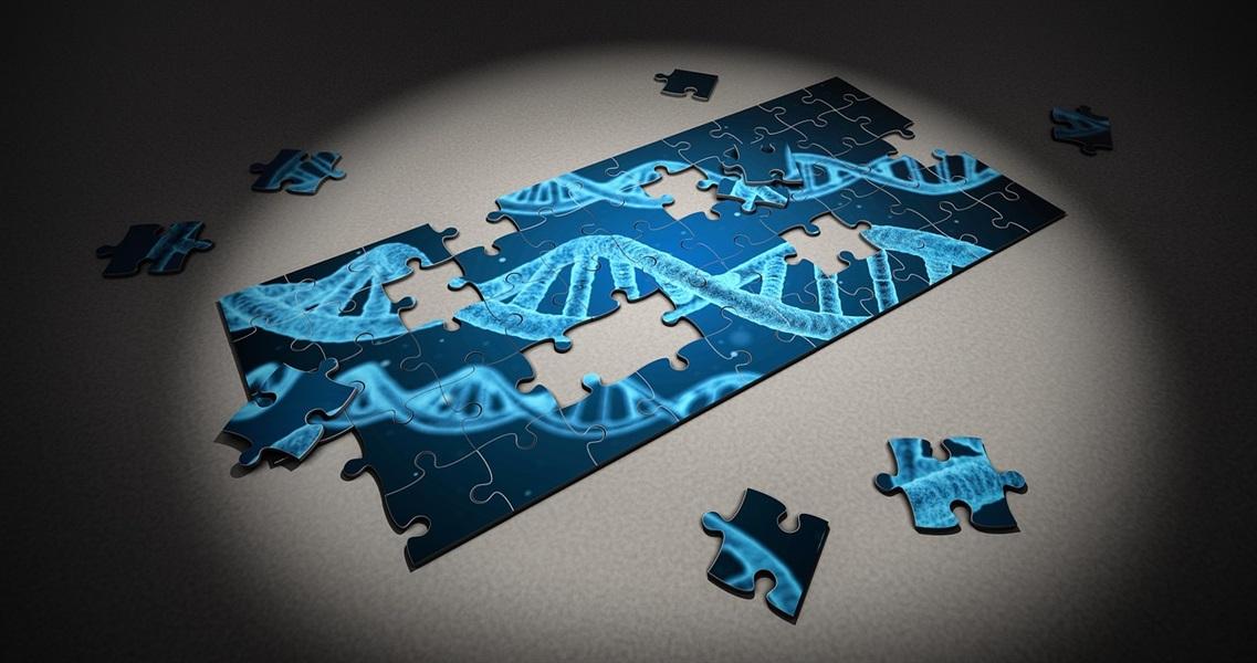 Newest News: Gut, Periodontal Disease, & RA