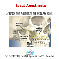 Which injection anesthetizes the maxillary posterior teeth?