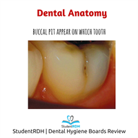 Which tooth has a buccal pit?