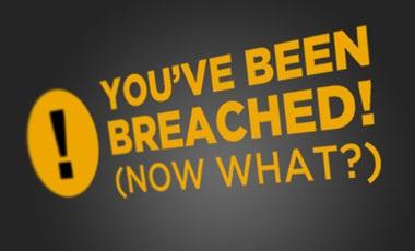 Prompt Breach Notification Retains Patients