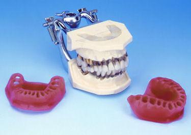 Periodontal Hygiene Models Manikins Phantom From Buyamag.com Help Gain Practical Experience In Periodontal Techniques to Students & Office Stuff