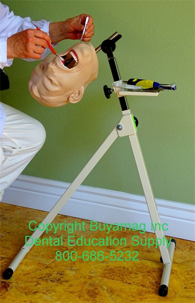 At Buyamag.com Dental Education Practicing Teaching Stand Portable, The Stand can be used in schools or office for learning practicing dentistry techniques.
