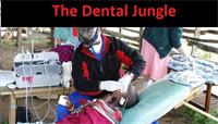The Dental Jungle – Operatories